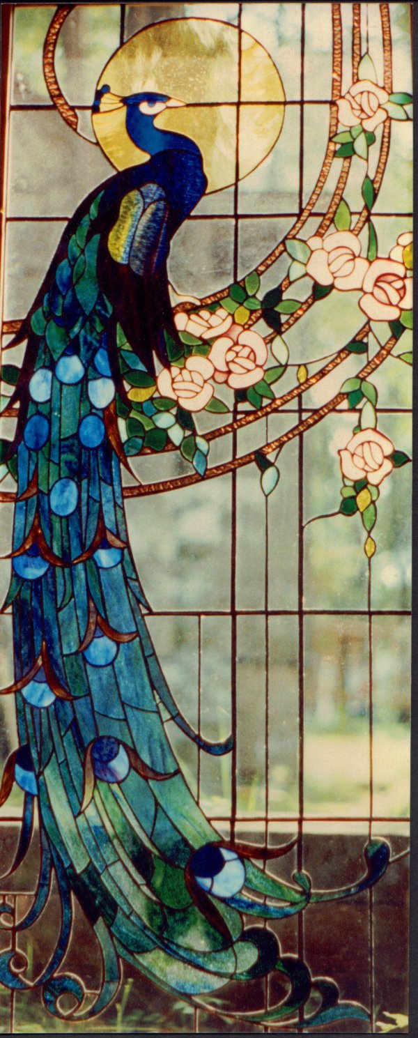 Peacock Stained Glass Window Patterns