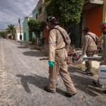 Se incrementan los casos de dengue en Jalisco