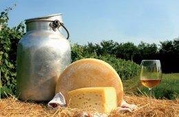 Gemona, formaggio... e dintorni