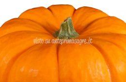 Le sagre d'autunno - ultimo fine settimana di ottobre