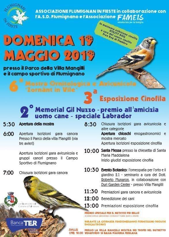 Mostra Ornitologica e Avicunicola a Flumignano