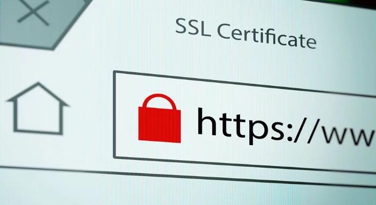 Ignorer le certificat SSL