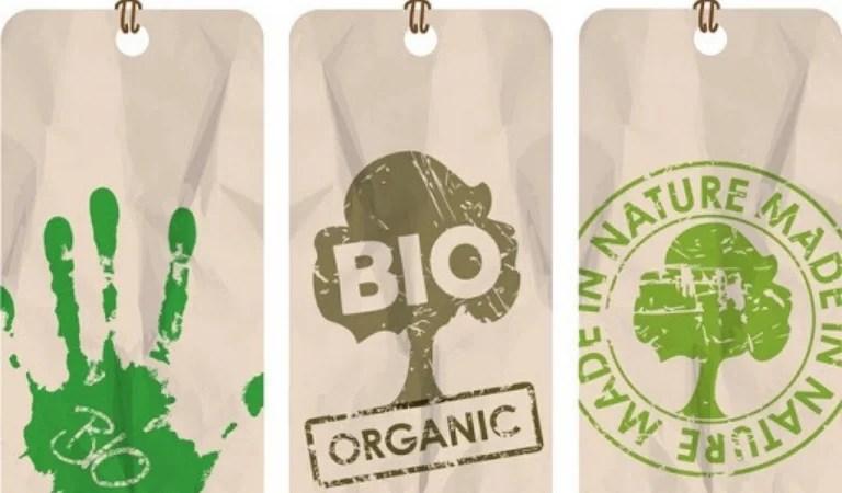 Montrez que vous êtes une marque écologique: étiquettes
