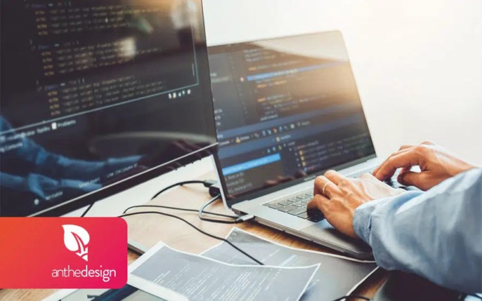 To become a web developer, what level of studies do you need?  AntheDesign