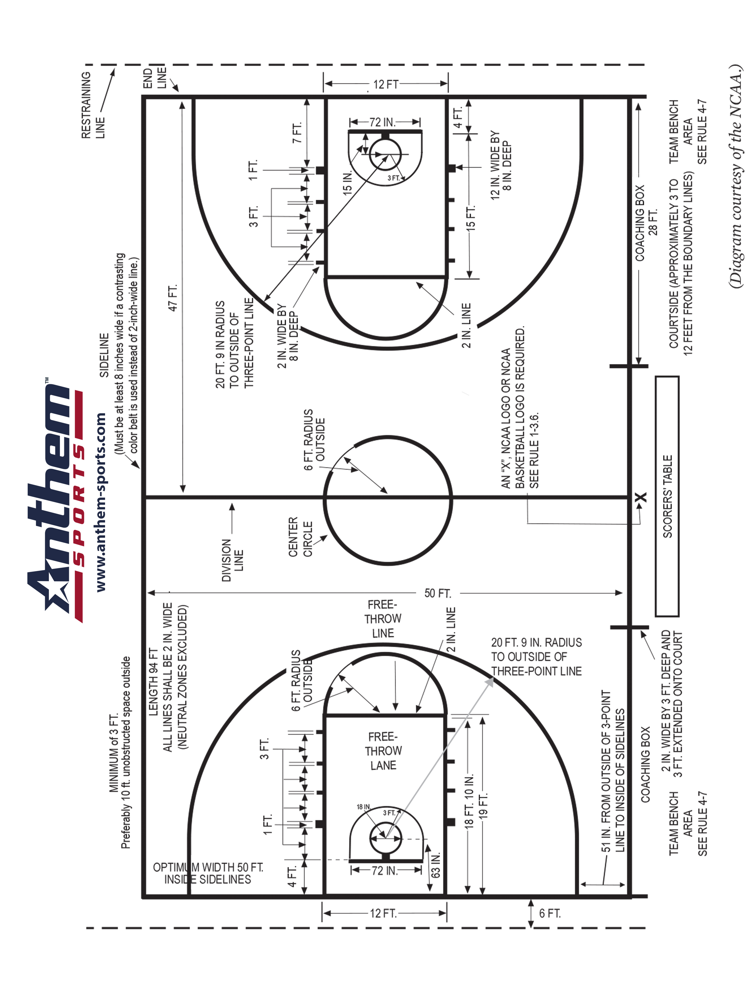 table shuffleboard dimensions diagram which represents anaphase i of meiosis ncaa basketball court