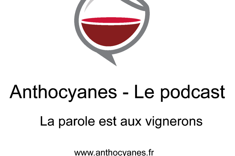 logo_anthocyanes_podcast