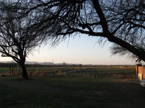 Aqua Linda Farms south of Tucson