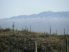 Near Tucson