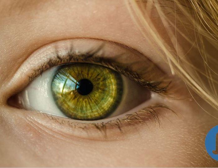 ¿Qué es antropología? dices mientras clavas en mi pupila tu pupila azul ¿qué es antropología? ¿y tú me lo preguntas? antropología… eres tú