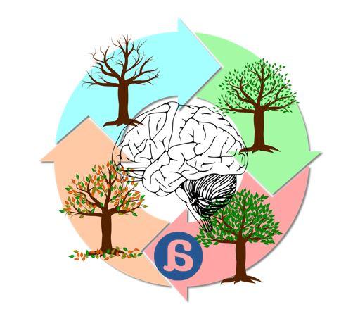 Cambios cognitivos según la estación del año