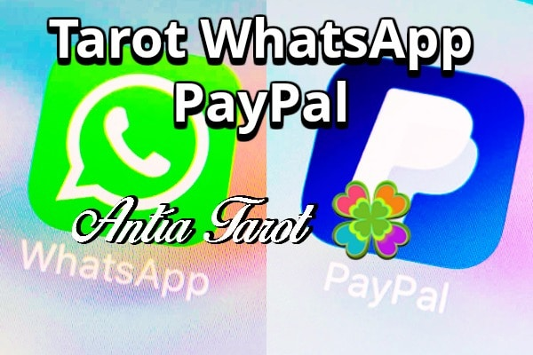 Tarot WhatsApp PayPal
