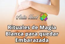 Photo of Rituales para quedar Embarazada… ¡Y habrá más!