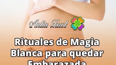 Rituales para quedar embarazada de MAGIA BLANCA. Antía Tarot.