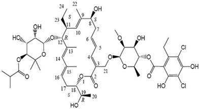 Antibiotic Drugs, Information, Description on Fidaxomicin.