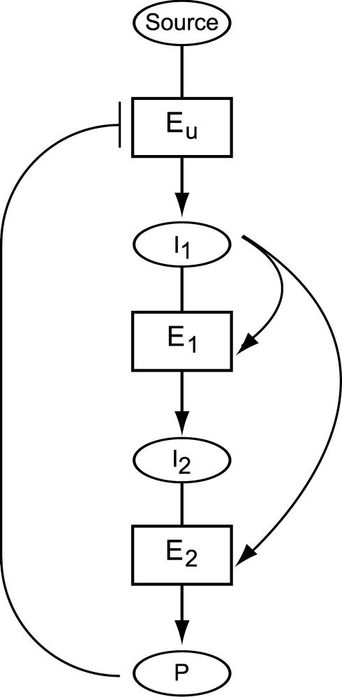 Dynamics and Design Principles of a Basic Regulatory