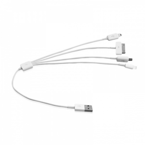 Multi-Tip USB Cable (4-into-1)