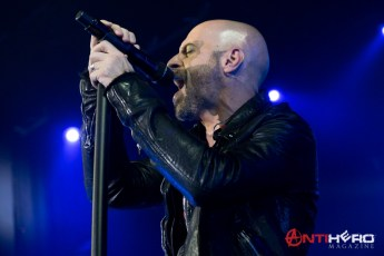 Daughtry (30)