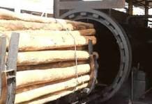 pengawetan kayu 3