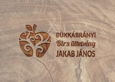 Birs.hu logó