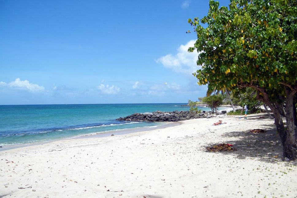 Plage Gros Raisin Martinique