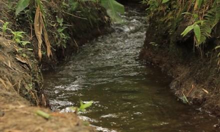 En Entrerríos el agua es un tesoro