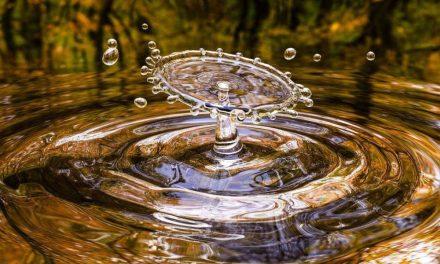 Cuidadores del agua en Santa Rosa de Osos