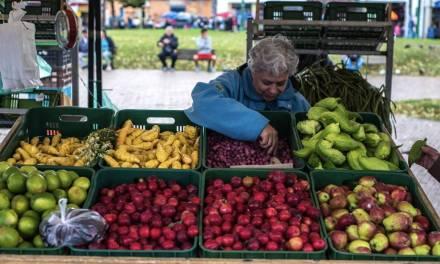 Mercado campesino virtual en Gómez Plata
