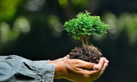 El cuidado ambiental en Anorí