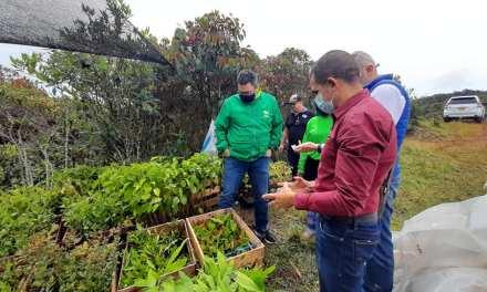 Yarumal busca ayudas para pequeños productores