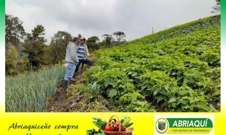 En Abriaquí se realizará el primer mercado campesino