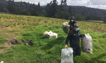 Positiva recolección de envases agroquímicos en Betulia