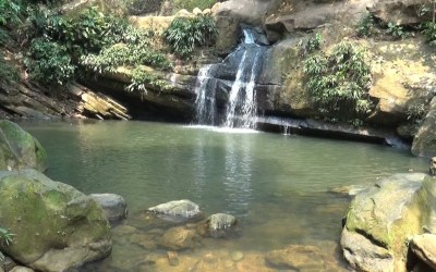 Cañasgordas protege las fuentes hídricas