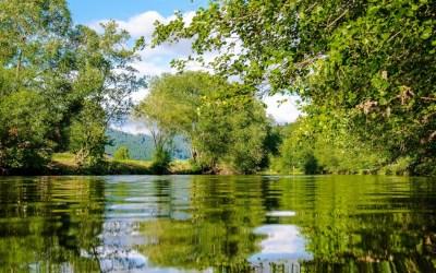 Sabanalarga cuida y protege las fuentes hídricas