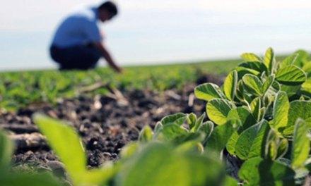 Entrerrios celebra a sus agrónomos