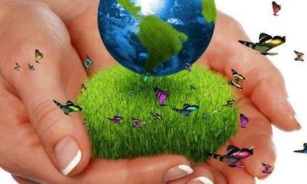 Pagos por Servicios Ambientales nuevo programa de Andes
