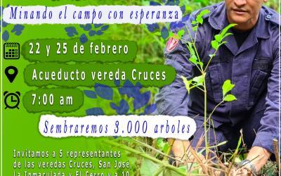 En Alejandría se sembrará 3000 árboles nativos en Cruces