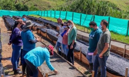 Las semillas de la alcaldía de Andes