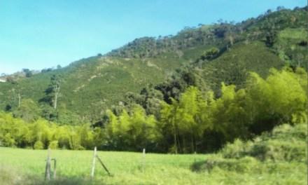 Progresos del medio ambiente en Betania