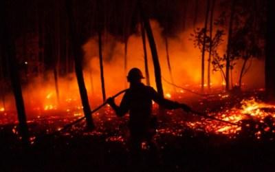 Yondó hace un llamado a los habitantes para evitar los incendios forestales