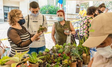 Regresó el Mercado Agroverde en Girardota