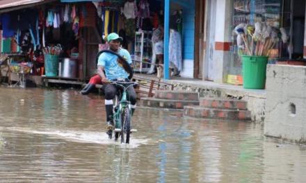 Se realizó la quinta sesión del Comité Científico para la Emergencia Climática