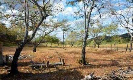 San Roque informa a la comunidad sobre qué hacer en esta temporada seca