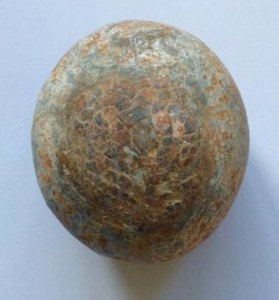 Fossilised dinosaur egg, 70 million years old,