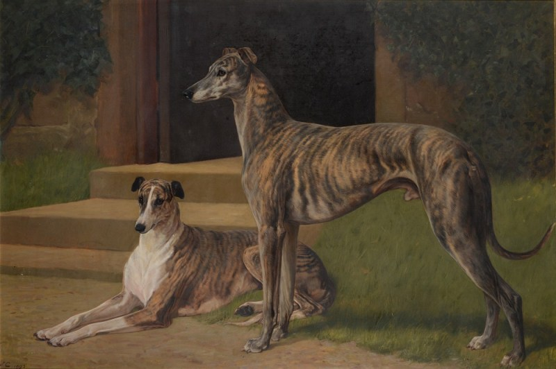 "John Charlton (1849-1917) ""Greyhounds 'Fullerton' and 'Bit of Fashion' outside Shortflatt Tower"""
