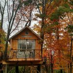 6 Treehouses For Rent
