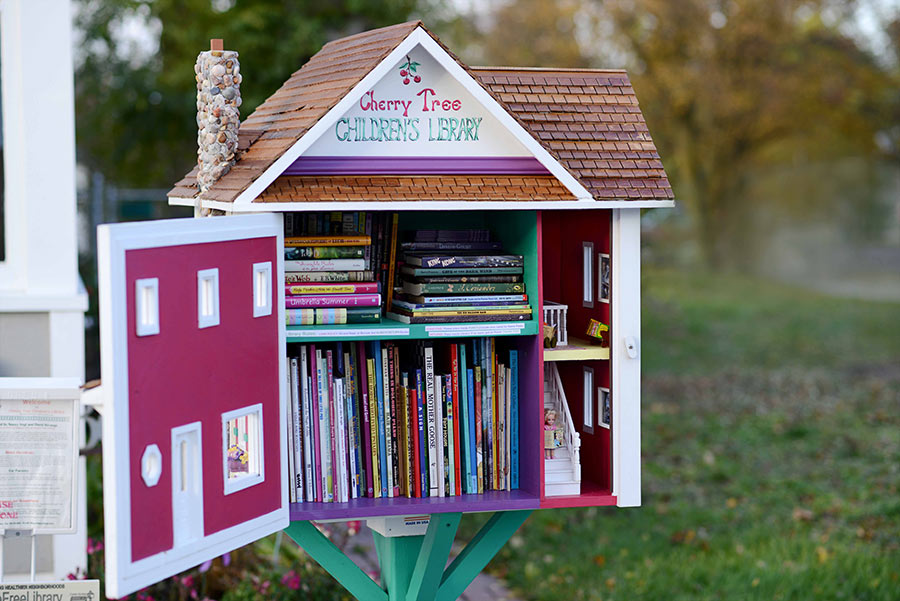 little-free-library-2