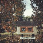 Being Neighborly: Book it to a Little Free Library