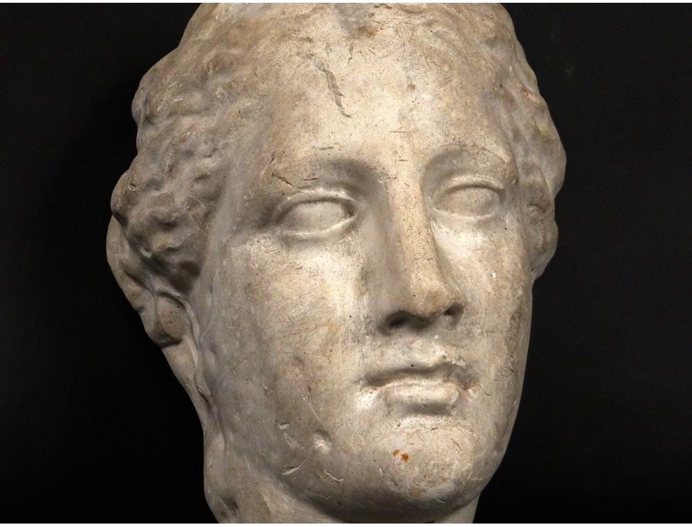 Plaster sculpture head girl goddess Venus Aphrodite apply nineteenth
