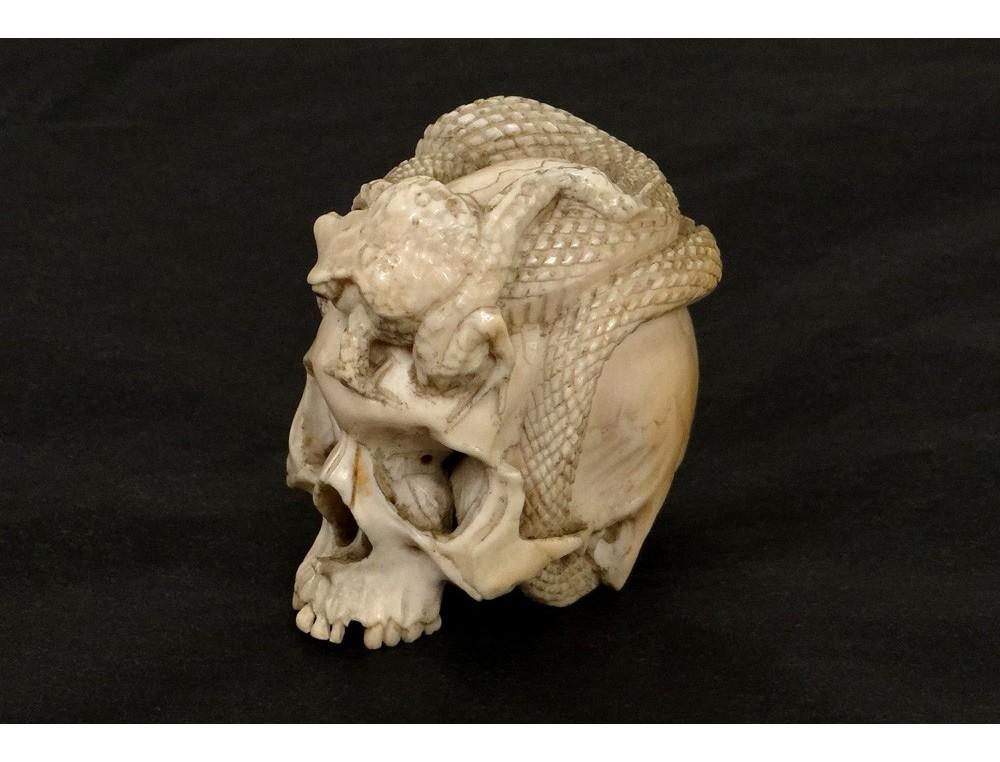 Sculpture ivoire Vanit crne serpent crapaud Japon XIXme