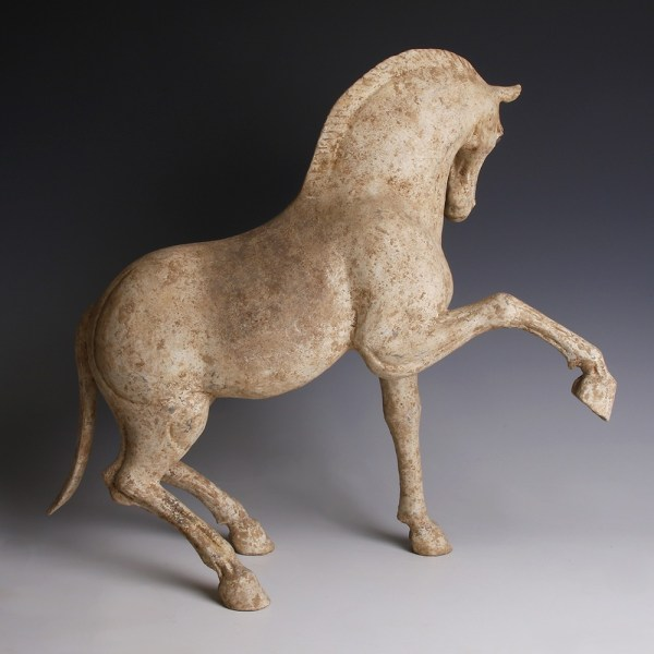 Terracotta Horse from the Tang Dynasty